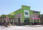 NNN Sweetfrogs For Sale